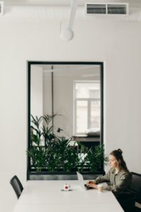Indoor plants as part of the interior design